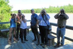 Acadiana Master Naturalist birders